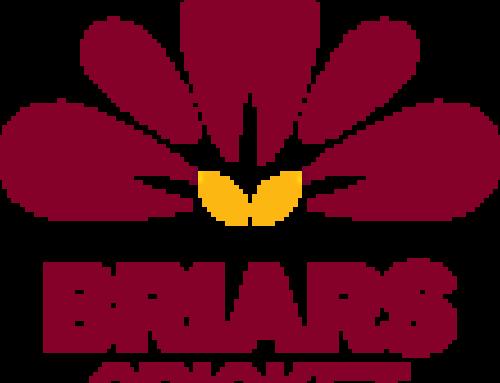 Briars Junior Cricket – 2019/2020 Season